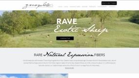 Website | Genopalette