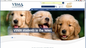 Website | VBMA