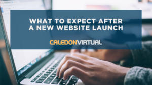 website launch what to expect